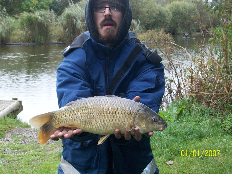 Coarse Fishing Llyn Y Gors Fisheries Isle Of Anglesey